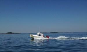 29' Dyer Sportfishing Boat